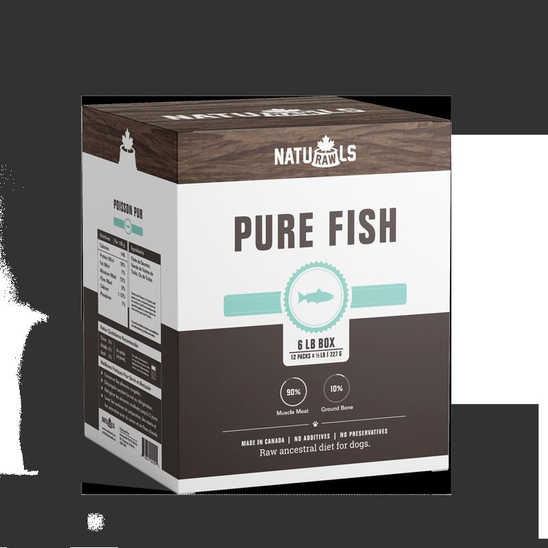 pure-fish_v4